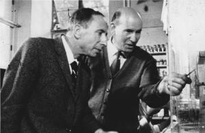 Edward Abraham and Guy Newton