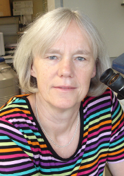 Elizabeth Robertson Sir William Dunn School Of Pathology