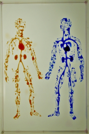 Image shows the human circulatory system in a uniwell plate with dimensions of a 96‐well plate.